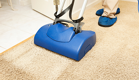 Wet Carpet Cleaners Near You